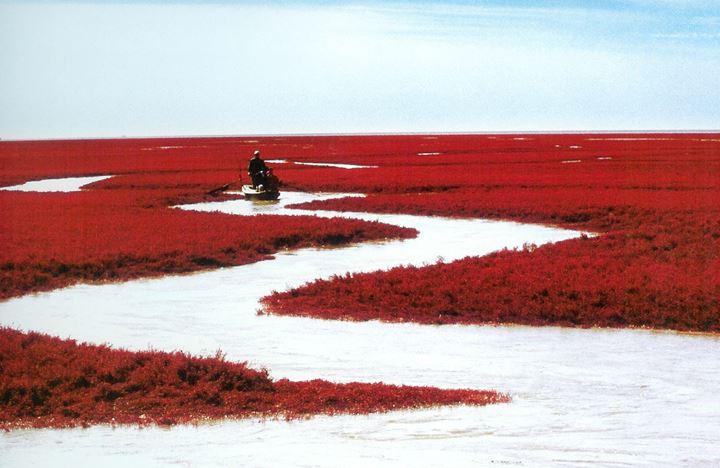panjin-red-beach-moon-bay