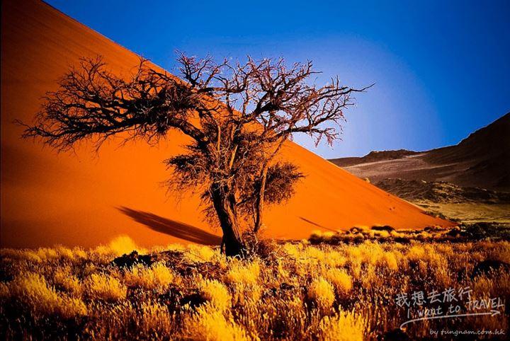 納米比亞2
