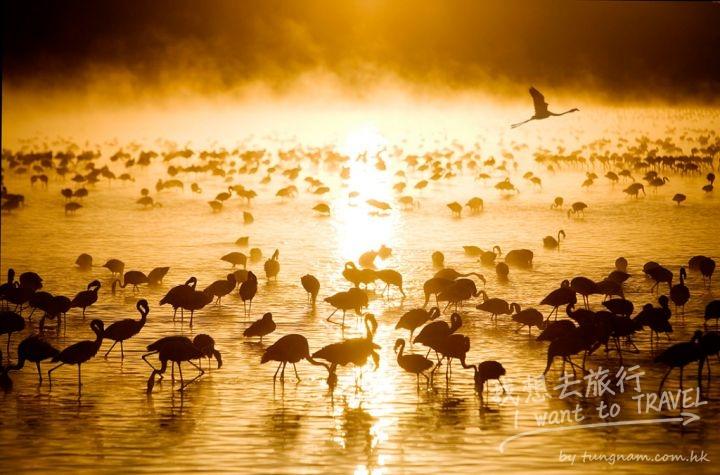 kenya sunrise2