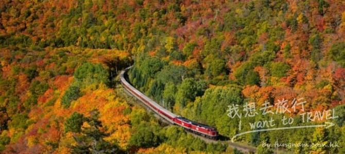 自駕游詳細攻略:加拿大安省八大賞楓路線