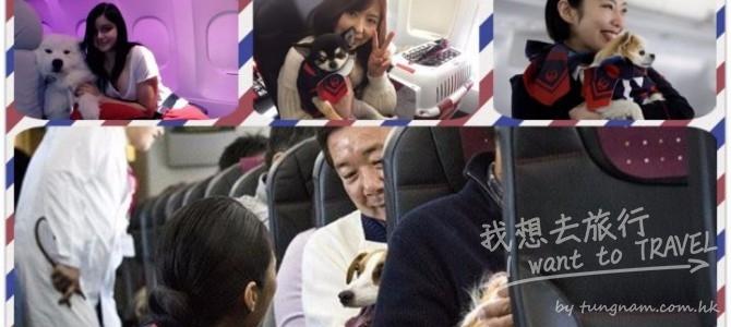 日本航空(JAL)首架寵物包機啟航, 同你嘅至愛一齊出遊