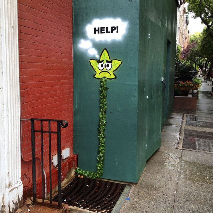 597ad62771b41-street-art-tom-bob-new-york-59798c10af299__880