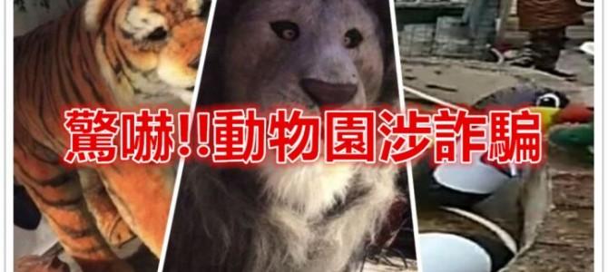 海南島動物園涉詐騙!!